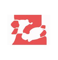 Tomáš Borl Logo
